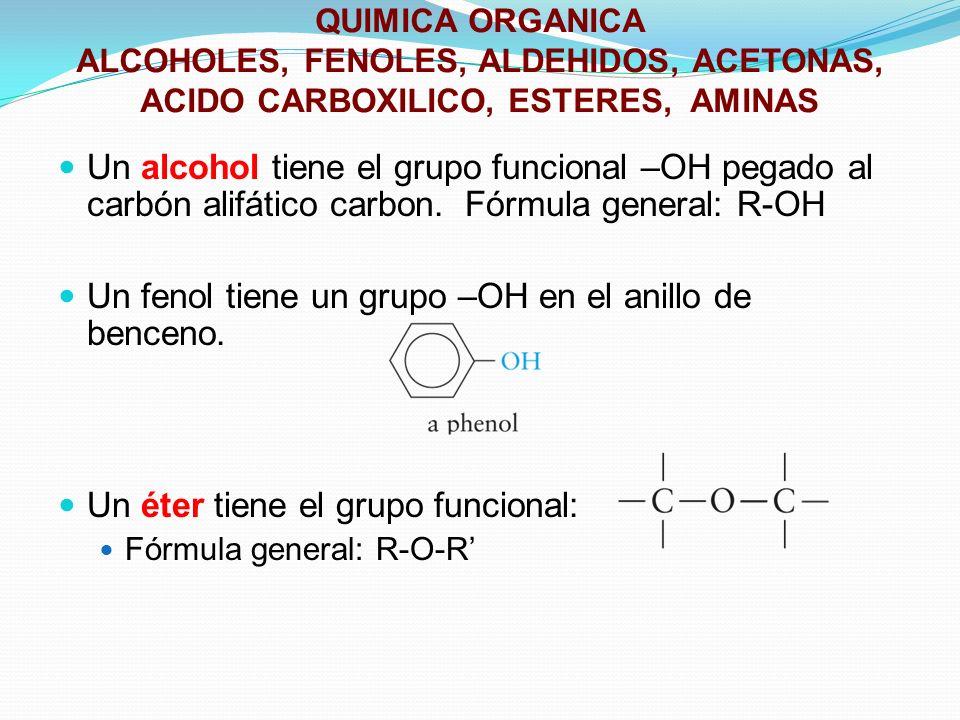 QUIMICA ORGANICA ALCOHOLES, FENOLES, ALDEHIDOS, ACETONAS, ACIDO CARBOXILICO, ESTERES, AMINAS Un alcohol tiene el grupo funcional –OH pegado al carbón