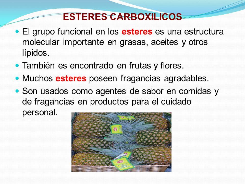 ESTERES CARBOXILICOS El grupo funcional en los esteres es una estructura molecular importante en grasas, aceites y otros lípidos. También es encontrad