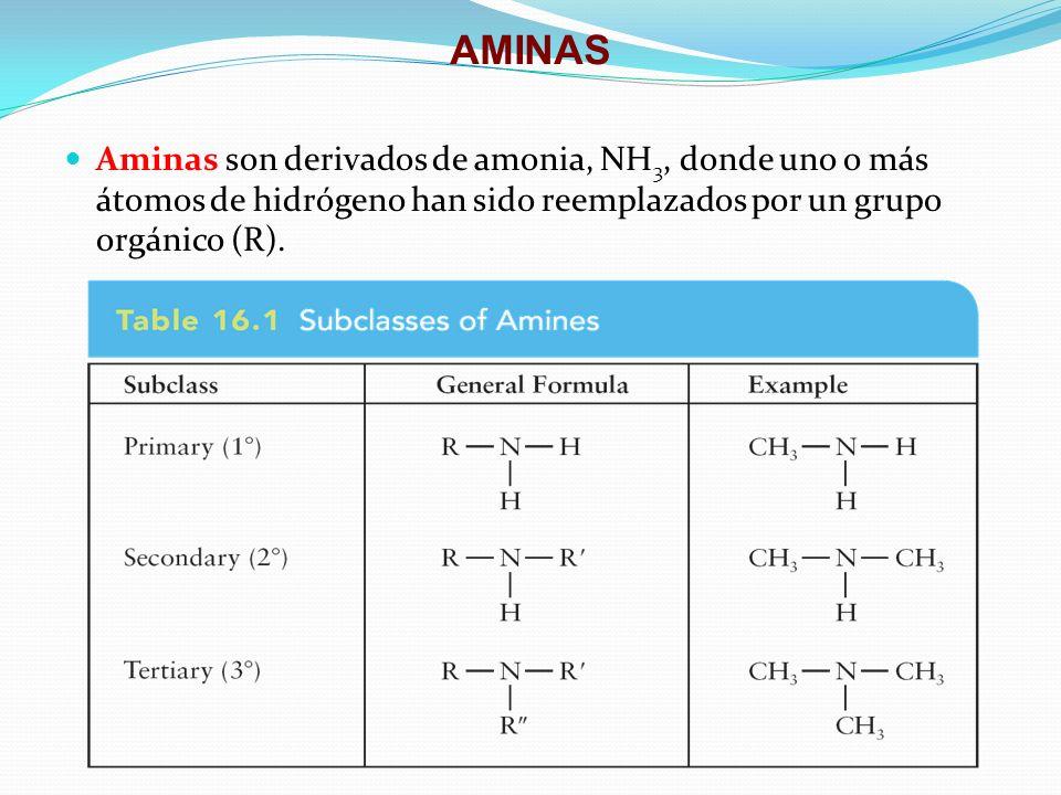AMINAS Aminas son derivados de amonia, NH 3, donde uno o más átomos de hidrógeno han sido reemplazados por un grupo orgánico (R).