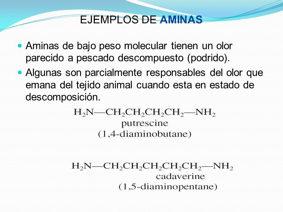 EJEMPLOS DE AMINAS Aminas de bajo peso molecular tienen un olor parecido a pescado descompuesto (podrido). Algunas son parcialmente responsables del o