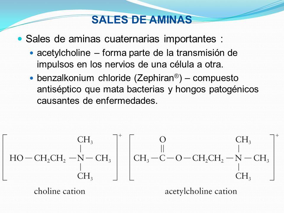 SALES DE AMINAS Sales de aminas cuaternarias importantes : acetylcholine – forma parte de la transmisión de impulsos en los nervios de una célula a ot