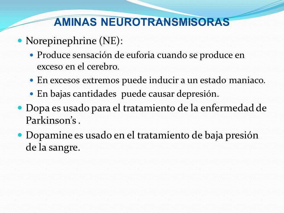 AMINAS NEUROTRANSMISORAS Norepinephrine (NE): Produce sensación de euforia cuando se produce en exceso en el cerebro. En excesos extremos puede induci