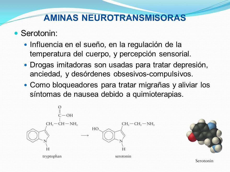 AMINAS NEUROTRANSMISORAS Serotonin: Influencia en el sueño, en la regulación de la temperatura del cuerpo, y percepción sensorial. Drogas imitadoras s