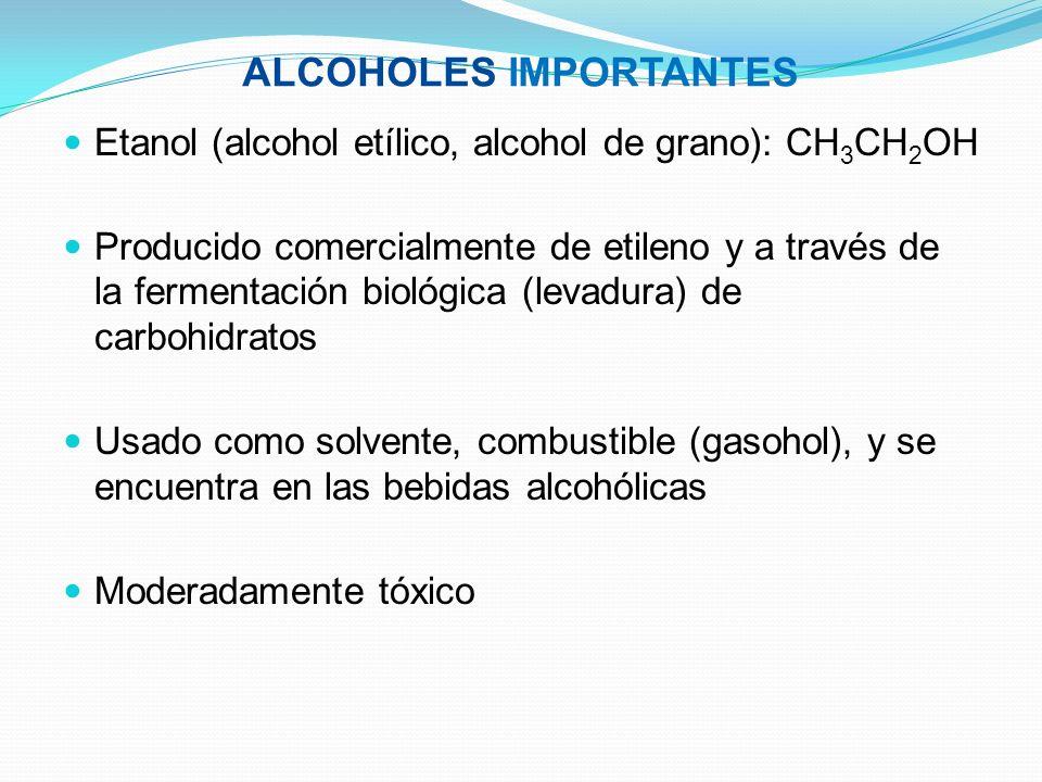 ALCOHOLES IMPORTANTES Etanol (alcohol etílico, alcohol de grano): CH 3 CH 2 OH Producido comercialmente de etileno y a través de la fermentación bioló