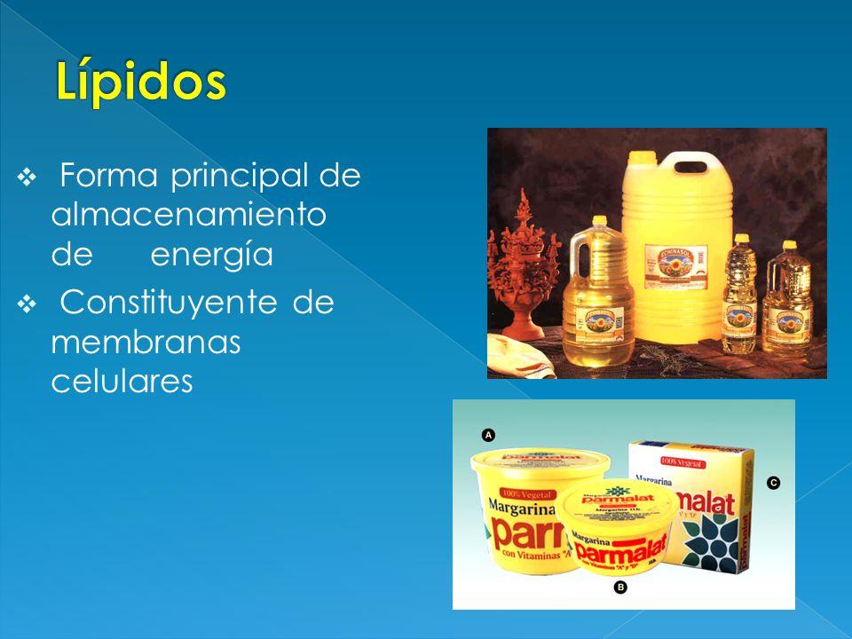 Pigmentos (retinol, carotenos) Cofactores ( vit.