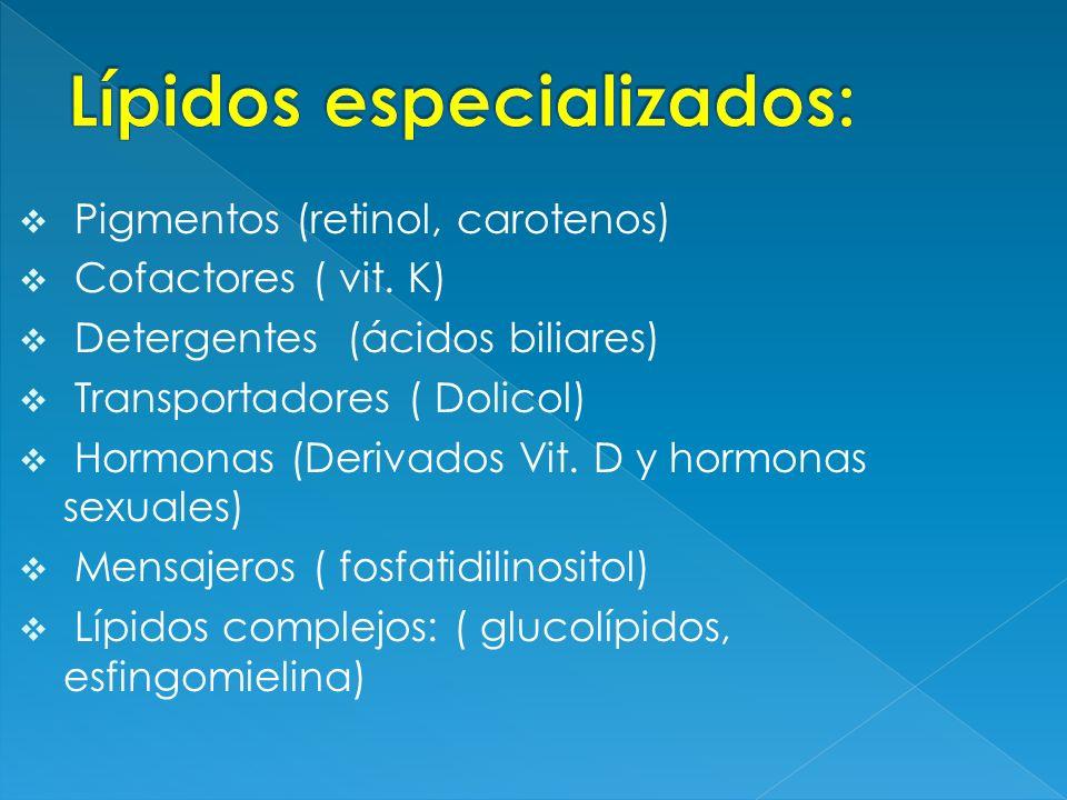Pigmentos (retinol, carotenos) Cofactores ( vit. K) Detergentes (ácidos biliares) Transportadores ( Dolicol) Hormonas (Derivados Vit. D y hormonas sex