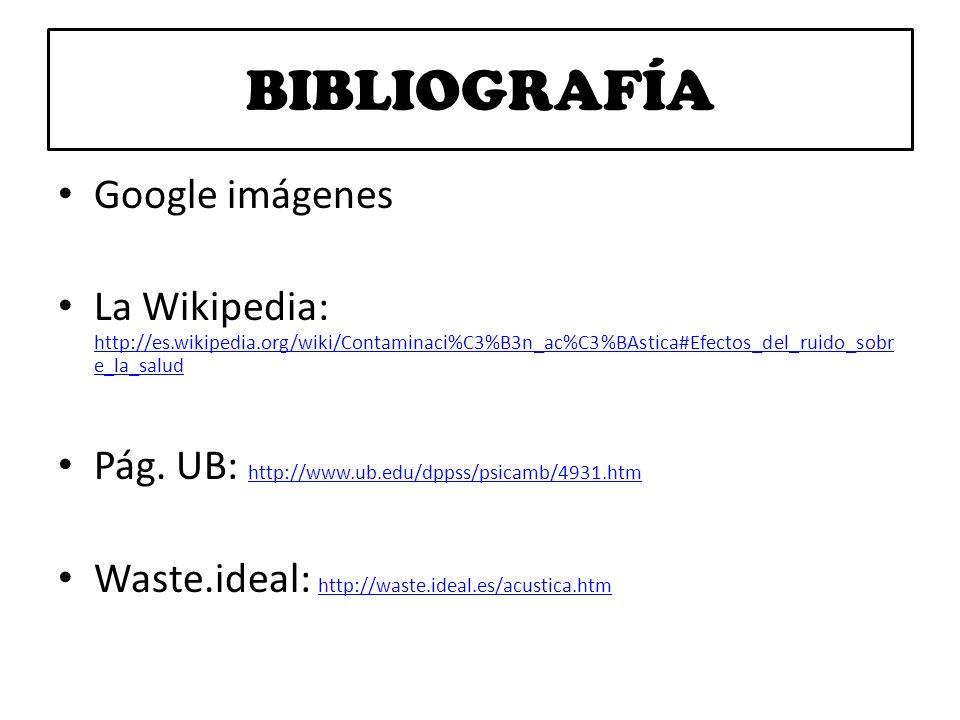 BIBLIOGRAFÍA Google imágenes La Wikipedia: http://es.wikipedia.org/wiki/Contaminaci%C3%B3n_ac%C3%BAstica#Efectos_del_ruido_sobr e_la_salud http://es.w