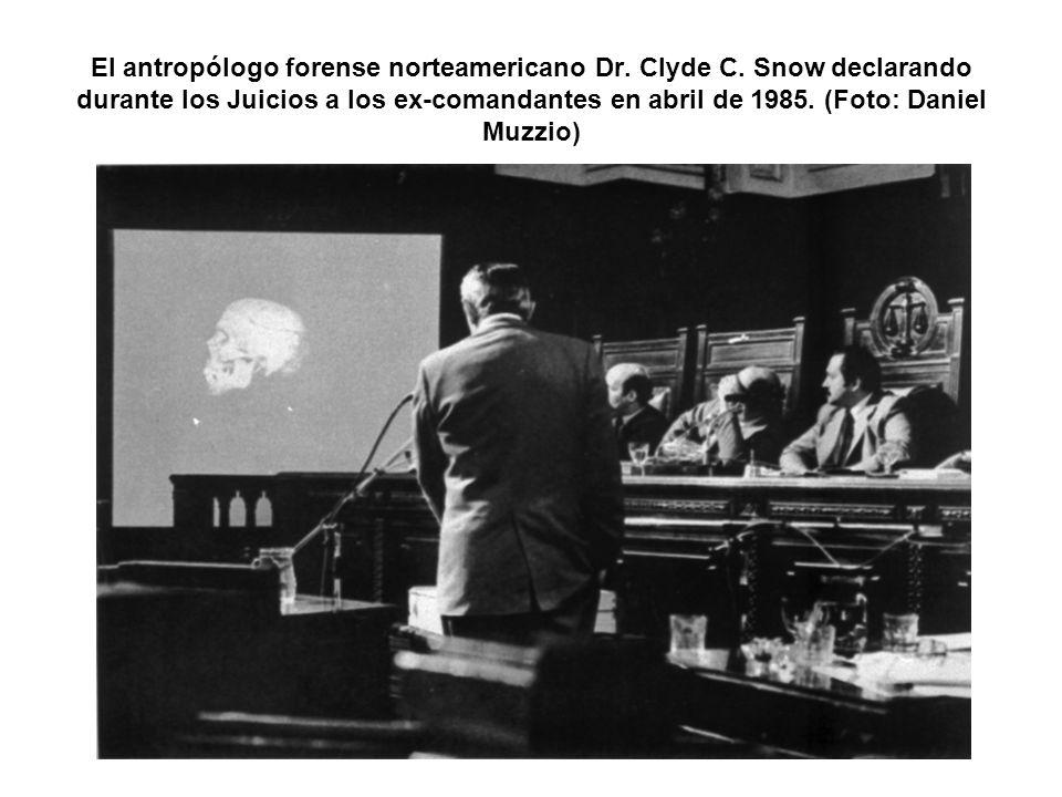 El antropólogo forense norteamericano Dr. Clyde C. Snow declarando durante los Juicios a los ex-comandantes en abril de 1985. (Foto: Daniel Muzzio)