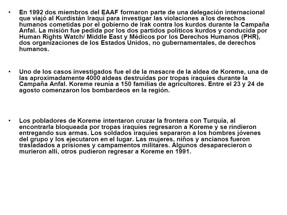 En 1992 dos miembros del EAAF formaron parte de una delegación internacional que viajó al Kurdistán Iraquí para investigar las violaciones a los derec