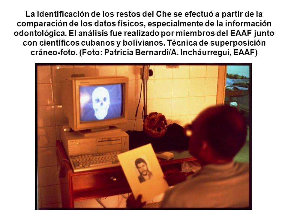 La identificación de los restos del Che se efectuó a partir de la comparación de los datos físicos, especialmente de la información odontológica. El a