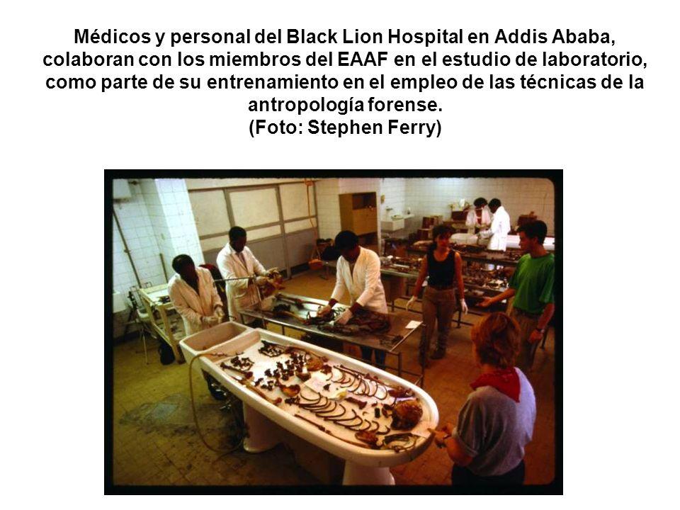 Médicos y personal del Black Lion Hospital en Addis Ababa, colaboran con los miembros del EAAF en el estudio de laboratorio, como parte de su entrenam