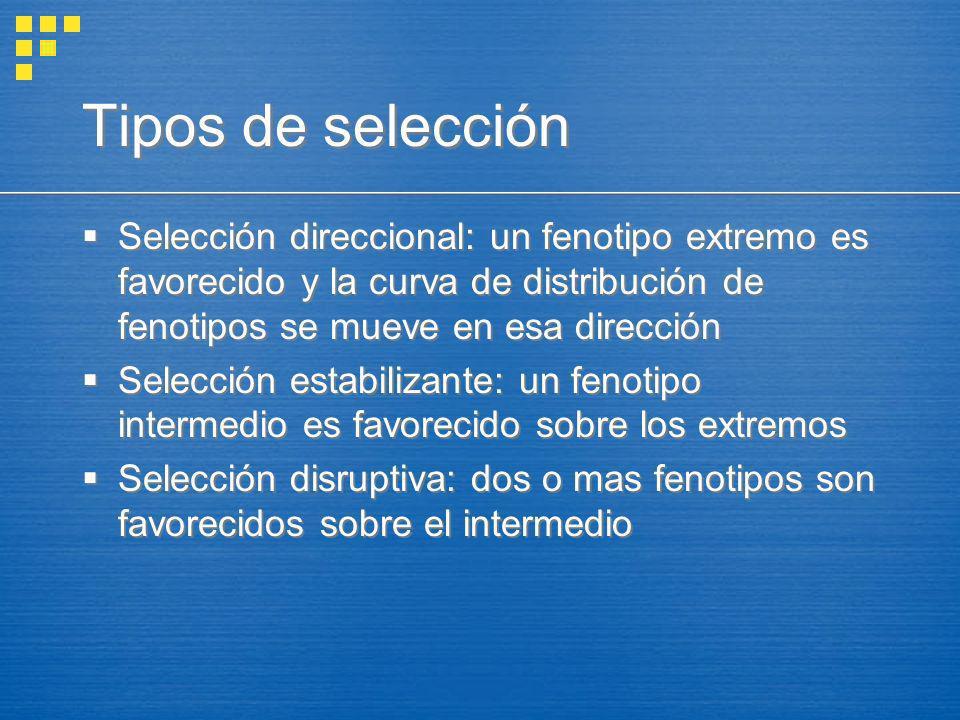 Tipos de selección Selección direccional: un fenotipo extremo es favorecido y la curva de distribución de fenotipos se mueve en esa dirección Selecció