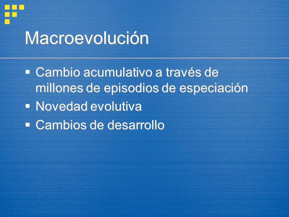 Macroevolución Cambio acumulativo a través de millones de episodios de especiación Novedad evolutiva Cambios de desarrollo Cambio acumulativo a través