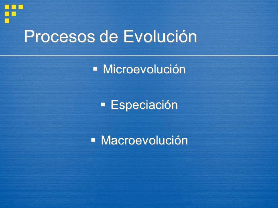 Procesos de Evolución Microevolución Especiación Macroevolución Microevolución Especiación Macroevolución