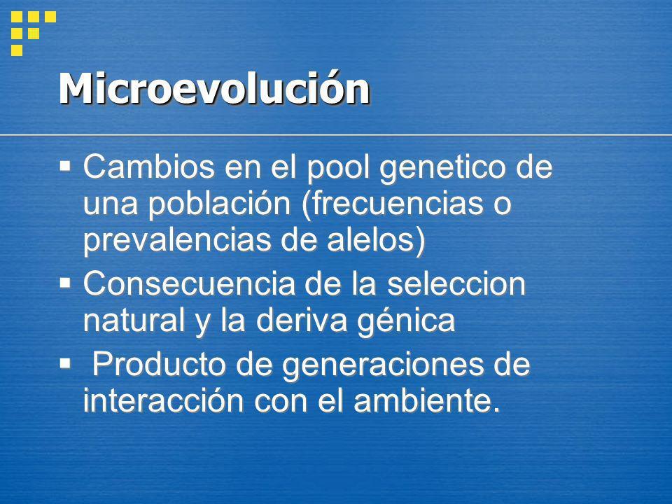 Causas de Microevolución Mutaciones genéticas Flujo génico (migración génica) Apareamiento no azaroso (reproducción disruptiva, selección sexual) Deriva génica (efecto cuello de botella, efecto fundador) Mutaciones genéticas Flujo génico (migración génica) Apareamiento no azaroso (reproducción disruptiva, selección sexual) Deriva génica (efecto cuello de botella, efecto fundador)