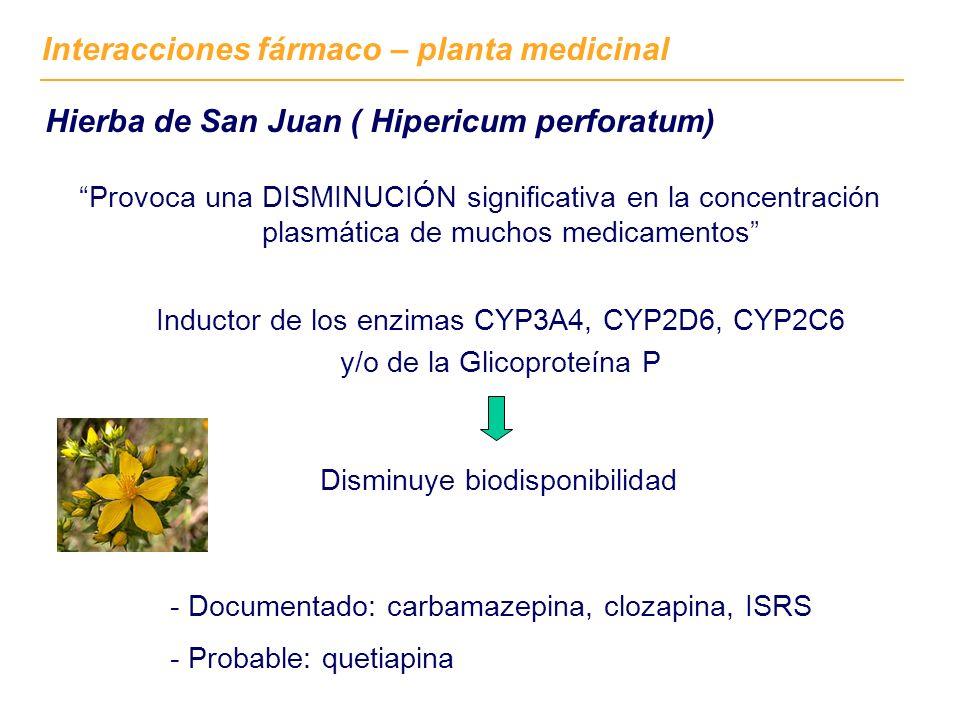 Provoca una DISMINUCIÓN significativa en la concentración plasmática de muchos medicamentos Hierba de San Juan ( Hipericum perforatum) Interacciones fármaco – planta medicinal - Documentado: carbamazepina, clozapina, ISRS - Probable: quetiapina Inductor de los enzimas CYP3A4, CYP2D6, CYP2C6 y/o de la Glicoproteína P Disminuye biodisponibilidad