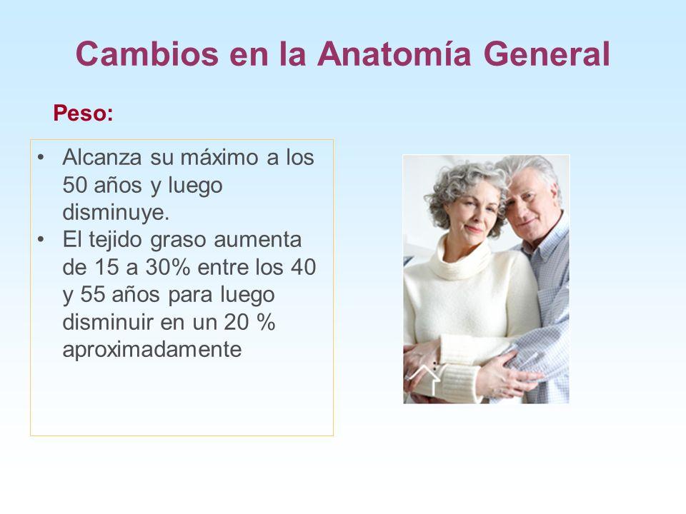 Cambios en la Anatomía General Alcanza su máximo a los 50 años y luego disminuye. El tejido graso aumenta de 15 a 30% entre los 40 y 55 años para lueg