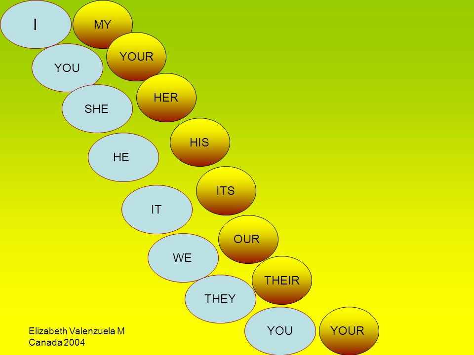 I YOU SHE HE IT WE THEY YOU MY YOUR HER HIS ITS OUR THEIR YOUR
