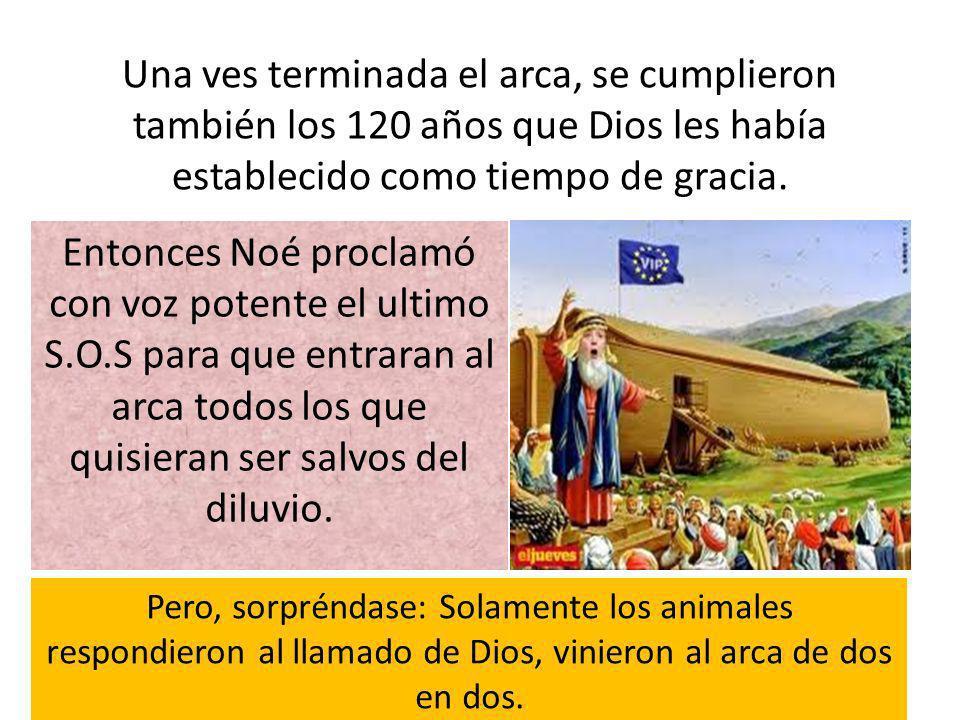 Una ves terminada el arca, se cumplieron también los 120 años que Dios les había establecido como tiempo de gracia. Entonces Noé proclamó con voz pote