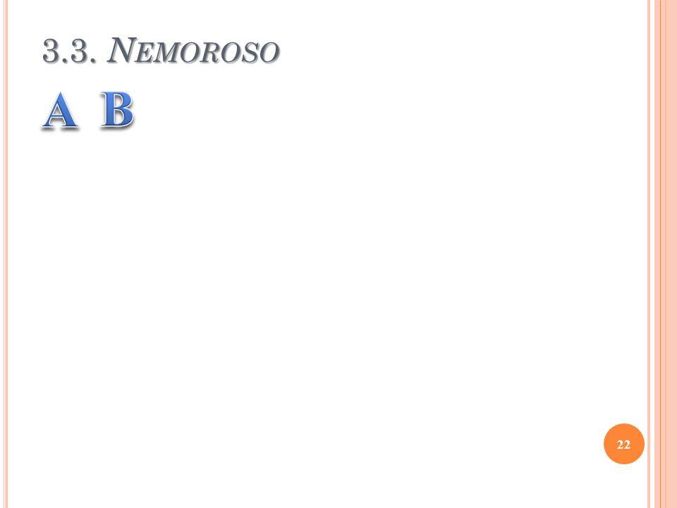 3.3. N EMOROSO 22