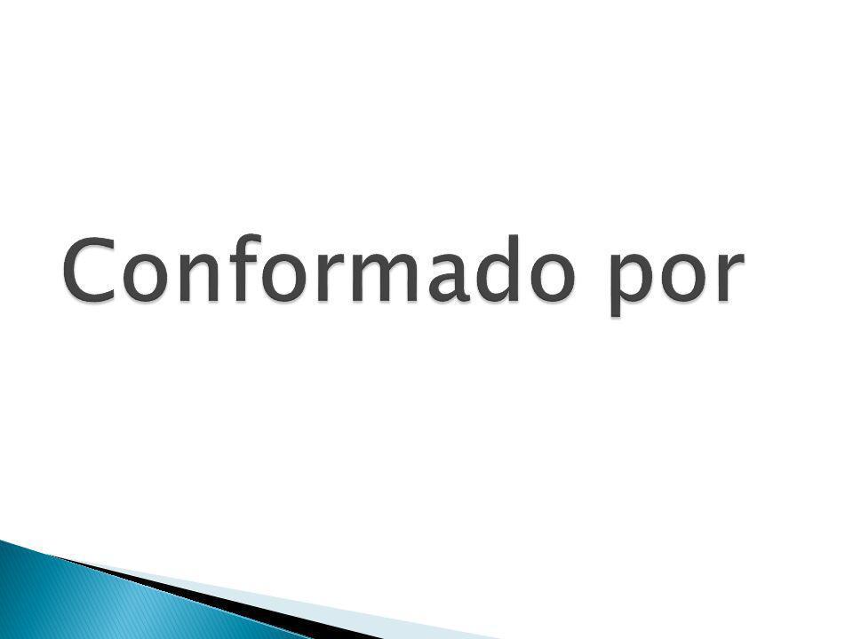 CAVIDAD ORAL LABIOS CARRILLOS ENCIAS DIENTES PALADAR OROFARINGE LENGUA FARINGE