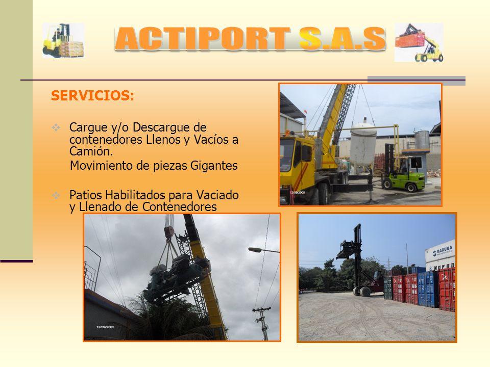VISION ACTIPORT S.A.S., para el 2013 esperamos afianzar nuevas raíces que nos expandan no solo a nivel de Sociedades Portuarias o Termínales Privados