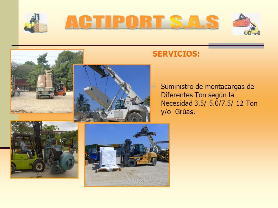 SERVICIOS: Personal habilitado para Llenado, Vaciado de contenedores y clasificación, embalaje de Mercancía para depositar en Bodegas