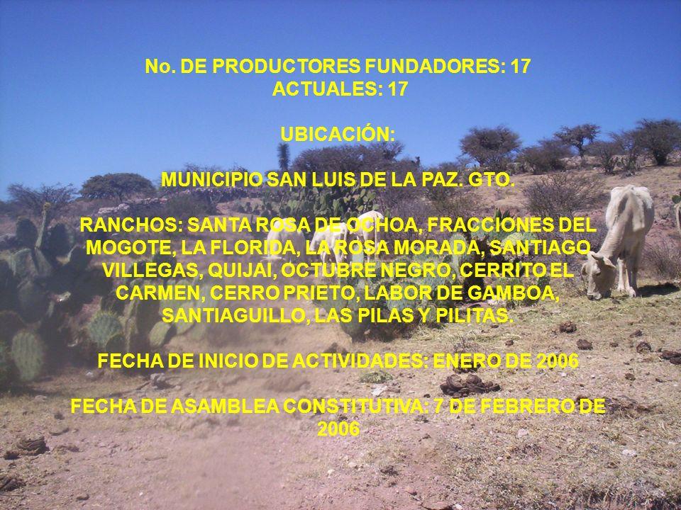 No. DE PRODUCTORES FUNDADORES: 17 ACTUALES: 17 UBICACIÓN: MUNICIPIO SAN LUIS DE LA PAZ. GTO. RANCHOS: SANTA ROSA DE OCHOA, FRACCIONES DEL MOGOTE, LA F