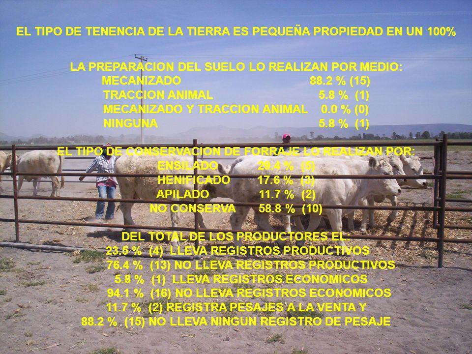 EL TIPO DE TENENCIA DE LA TIERRA ES PEQUEÑA PROPIEDAD EN UN 100% LA PREPARACION DEL SUELO LO REALIZAN POR MEDIO: MECANIZADO 88.2 % (15) TRACCION ANIMA