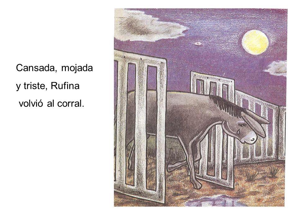 Cansada, mojada y triste, Rufina volvió al corral.
