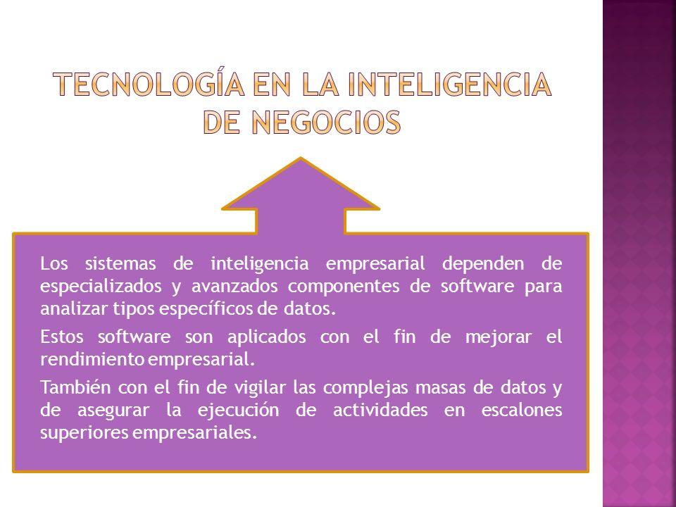 Los sistemas de inteligencia empresarial dependen de especializados y avanzados componentes de software para analizar tipos específicos de datos. Esto