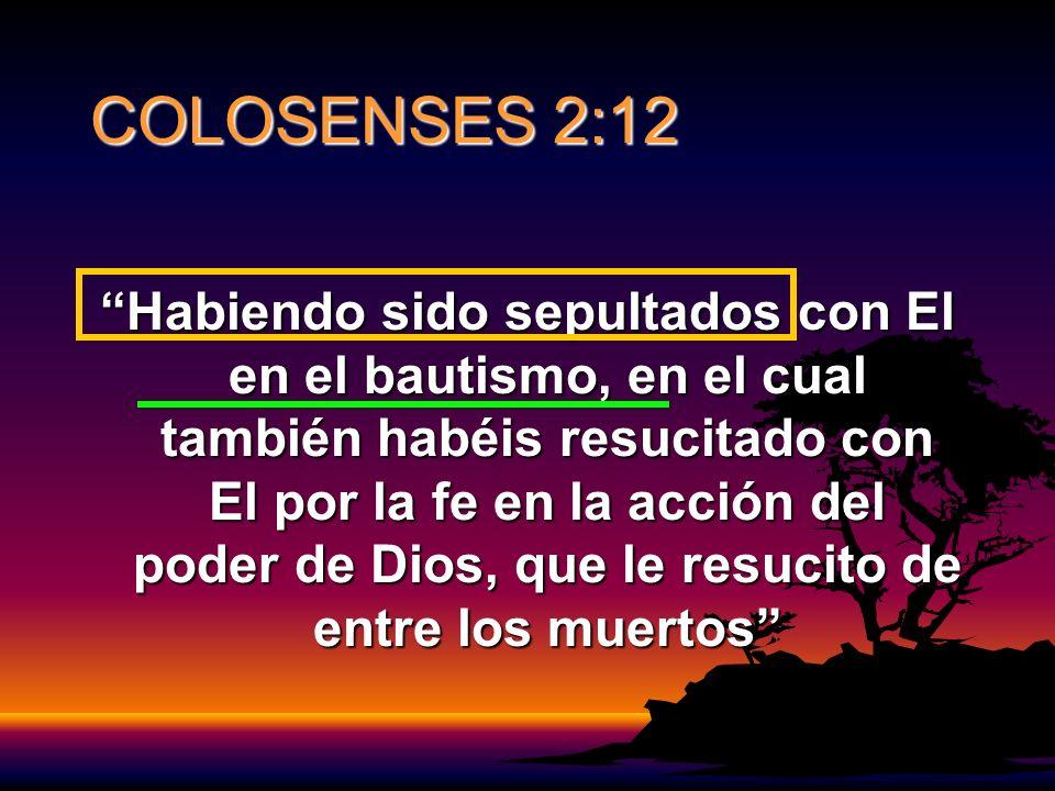 COLOSENSES 2:12 Habiendo sido sepultados con El en el bautismo, en el cual también habéis resucitado con El por la fe en la acción del poder de Dios, que le resucito de entre los muertos