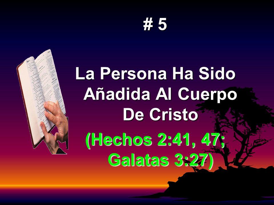 # 5 La Persona Ha Sido Añadida Al Cuerpo De Cristo (Hechos 2:41, 47; Galatas 3:27)