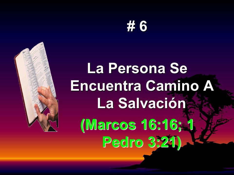# 6 La Persona Se Encuentra Camino A La Salvación (Marcos 16:16; 1 Pedro 3:21)