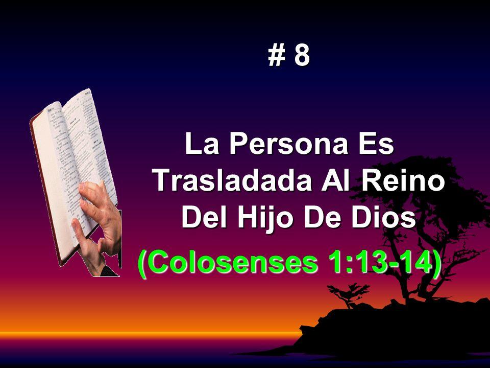 # 8 La Persona Es Trasladada Al Reino Del Hijo De Dios (Colosenses 1:13-14)