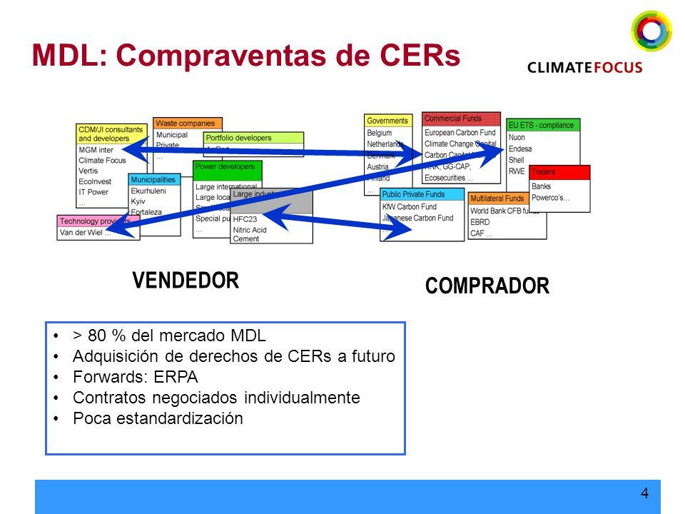 5 Elementos de Riesgo en los Negocios de Carbono Cuestiones Clave: –Riesgos del Proyecto Financiación, Aprobaciones, Construcción, Producción Tiene un impacto en: –Existencia del Proyecto –Por tanto, existencia y producción de ERs Necesidad de gestión a largo plazo –Riesgos del Protocolo Aprobación del país anfitrión, Cumplimiento, Elegibilidad, Transferencia Tiene un impacto en: –Existencia y cumplimiento de ERs –Precio Necesidad de gestión a largo plazo Principio: Atribuir el riesgo a la parte mejor capacitada para soportarlo