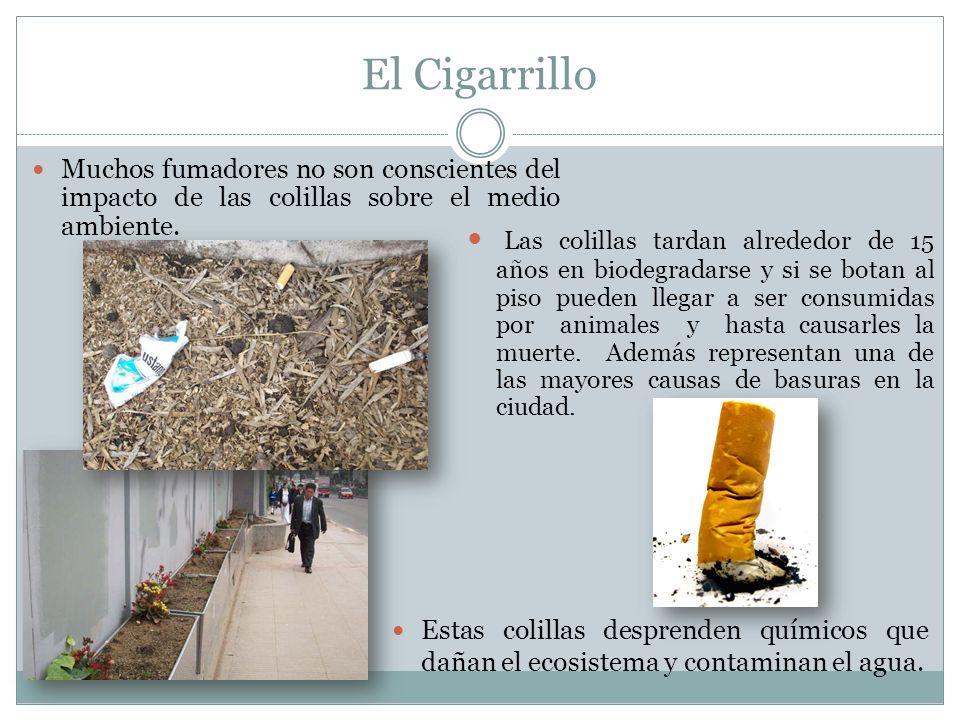 El Cigarrillo Estas colillas desprenden químicos que dañan el ecosistema y contaminan el agua. Muchos fumadores no son conscientes del impacto de las