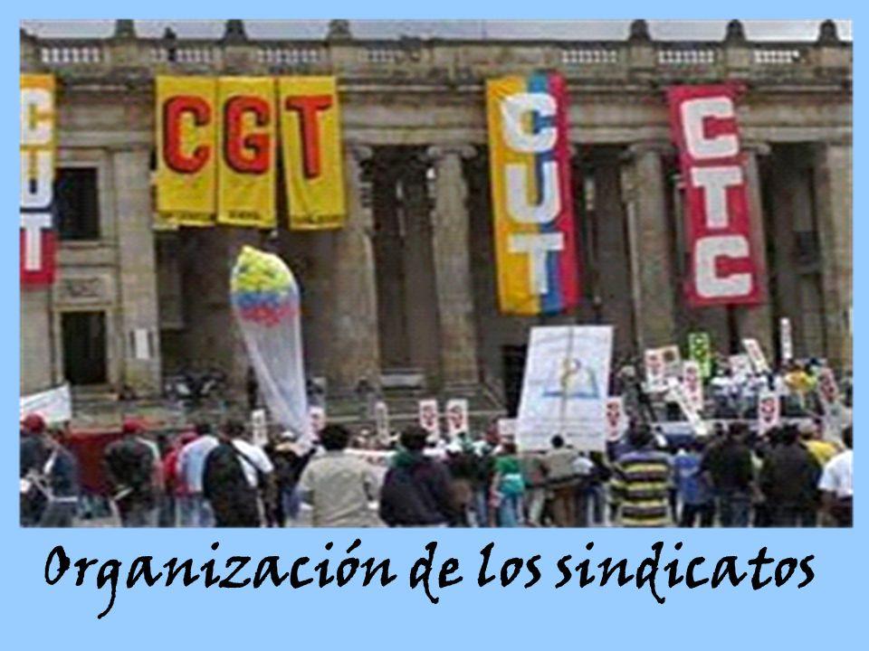 Organización de los sindicatos