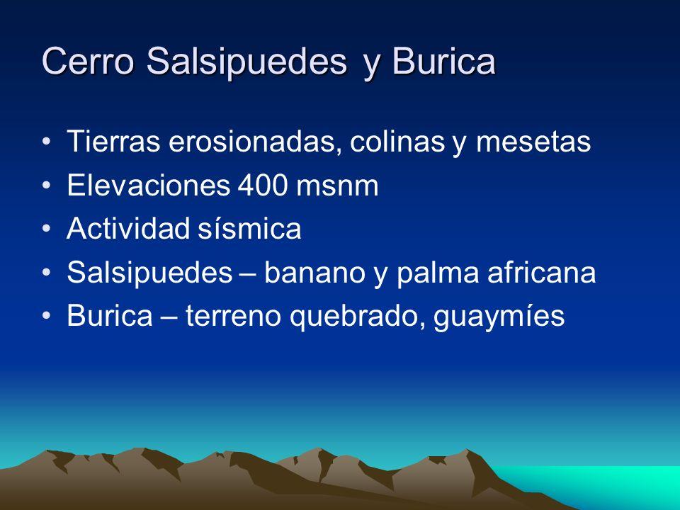 Cerro Salsipuedes y Burica Tierras erosionadas, colinas y mesetas Elevaciones 400 msnm Actividad sísmica Salsipuedes – banano y palma africana Burica