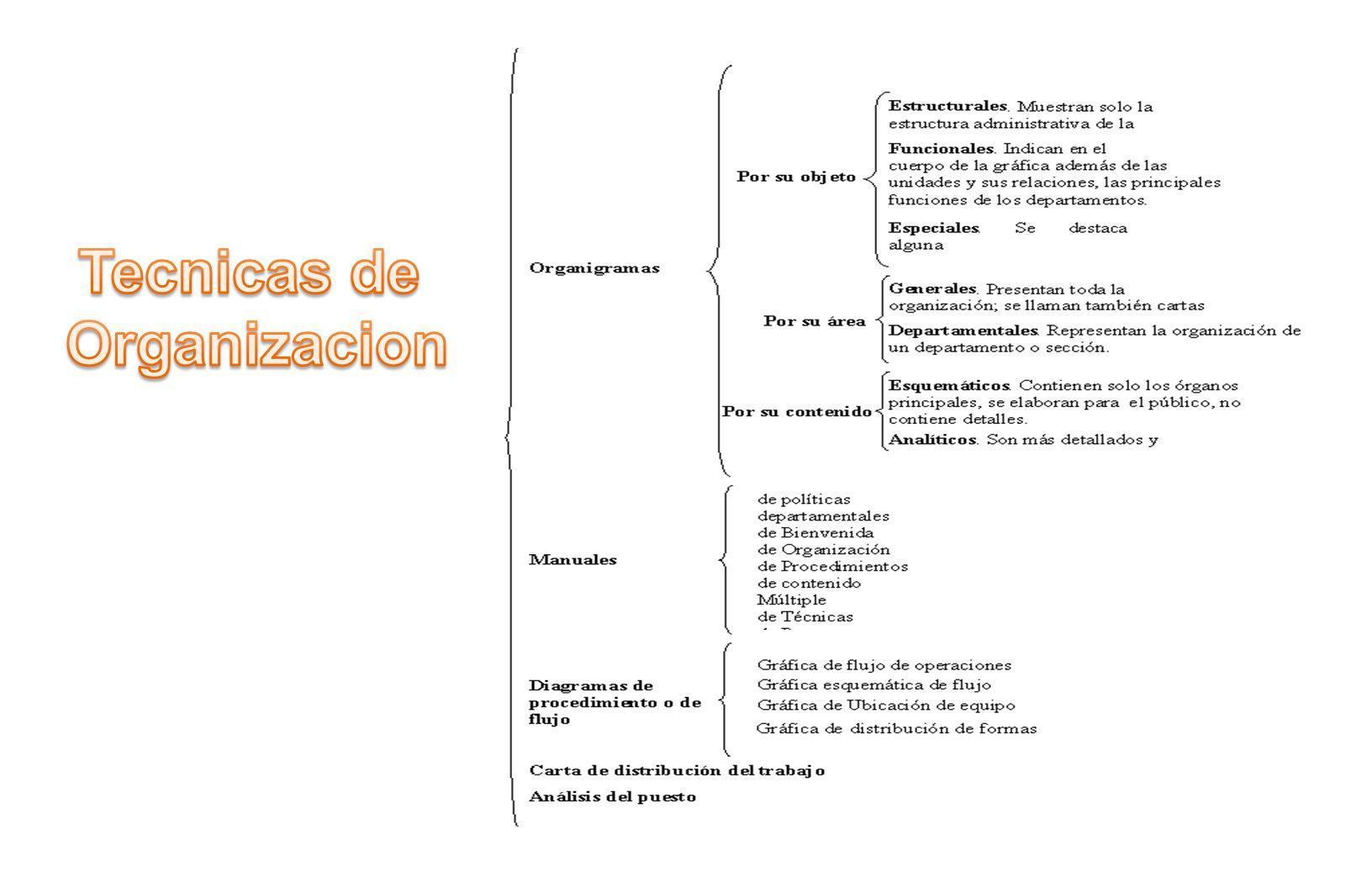 2.Se realizan una serie de reuniones para ir realizando la elaboración de una representación gráfica del proceso en cuestión.
