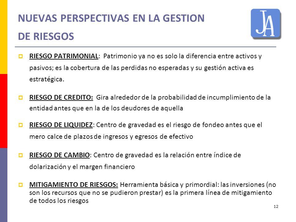 12 NUEVAS PERSPECTIVAS EN LA GESTION DE RIESGOS RIESGO PATRIMONIAL: Patrimonio ya no es solo la diferencia entre activos y pasivos; es la cobertura de