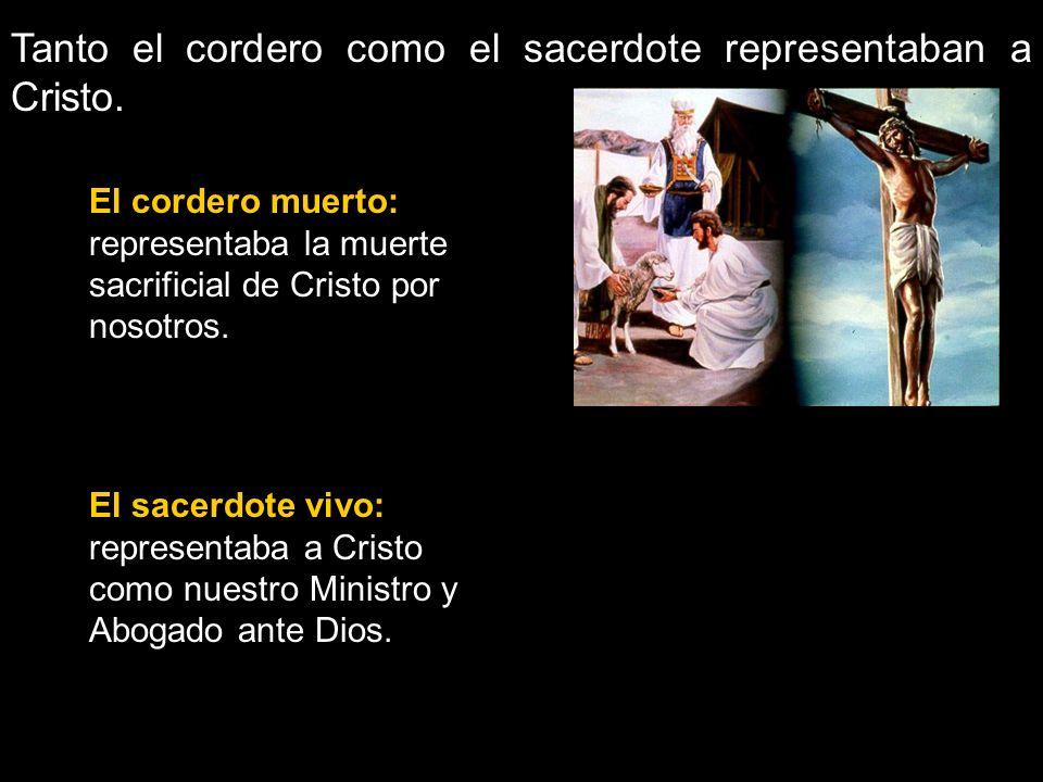 El sacerdote vivo: representaba a Cristo como nuestro Ministro y Abogado ante Dios. Tanto el cordero como el sacerdote representaban a Cristo. El cord