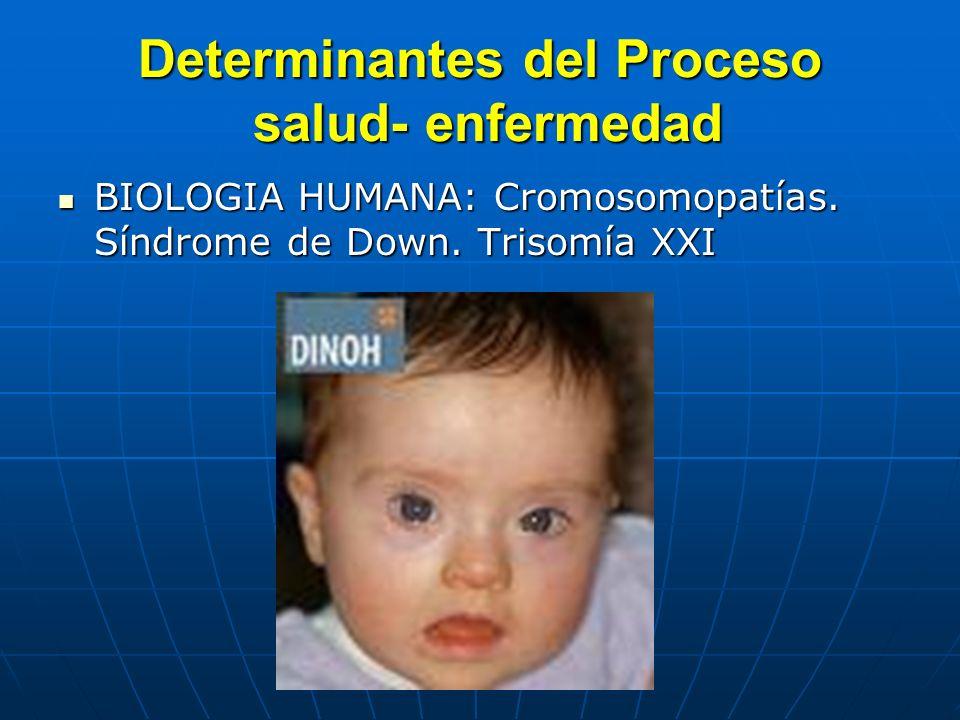 Determinantes del Proceso salud- enfermedad BIOLOGIA HUMANA: Cromosomopatías. Síndrome de Down. Trisomía XXI BIOLOGIA HUMANA: Cromosomopatías. Síndrom