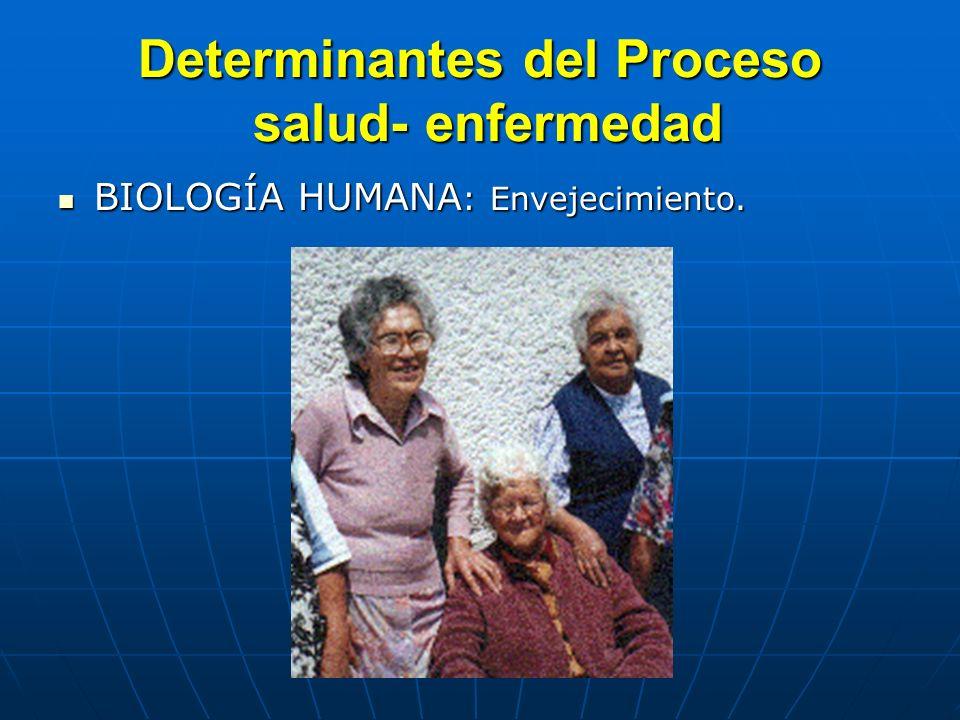 Determinantes del Proceso salud- enfermedad BIOLOGÍA HUMANA : Envejecimiento. BIOLOGÍA HUMANA : Envejecimiento.