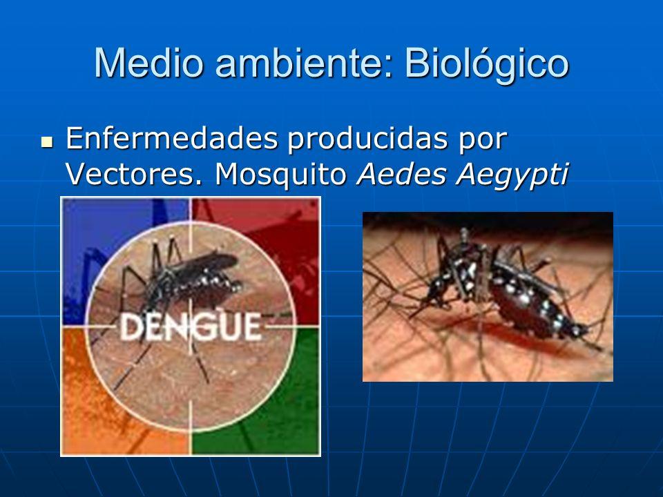 Medio ambiente: Biológico Enfermedades producidas por Vectores. Mosquito Aedes Aegypti Enfermedades producidas por Vectores. Mosquito Aedes Aegypti