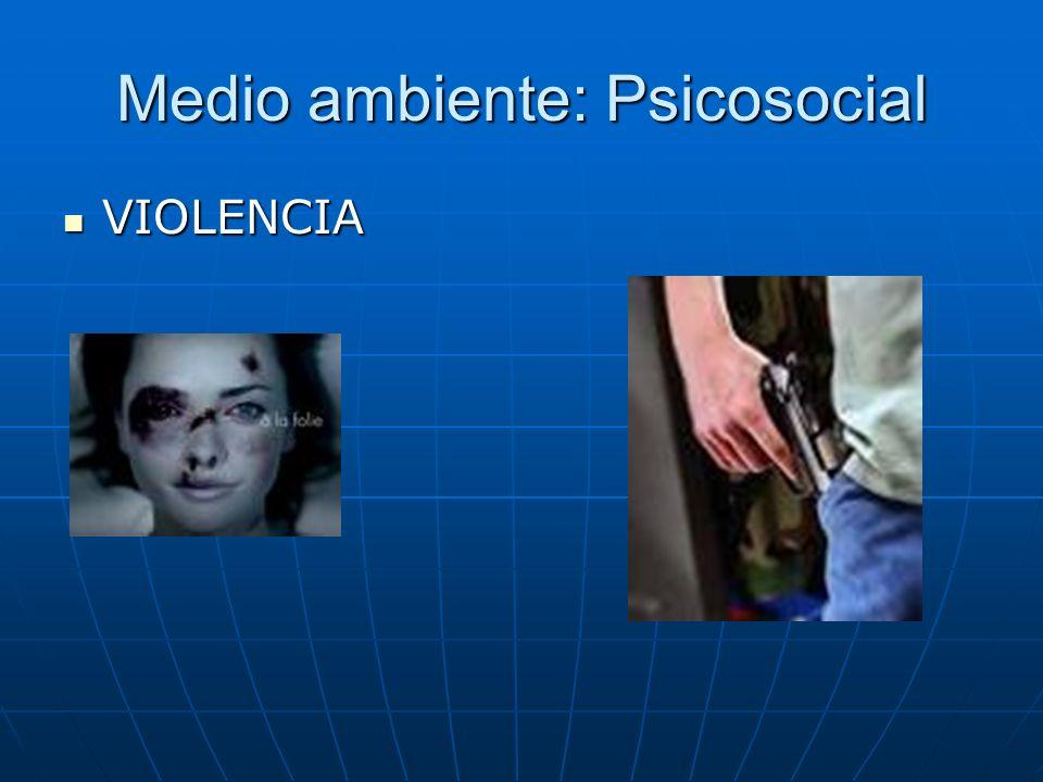 Medio ambiente: Psicosocial VIOLENCIA VIOLENCIA