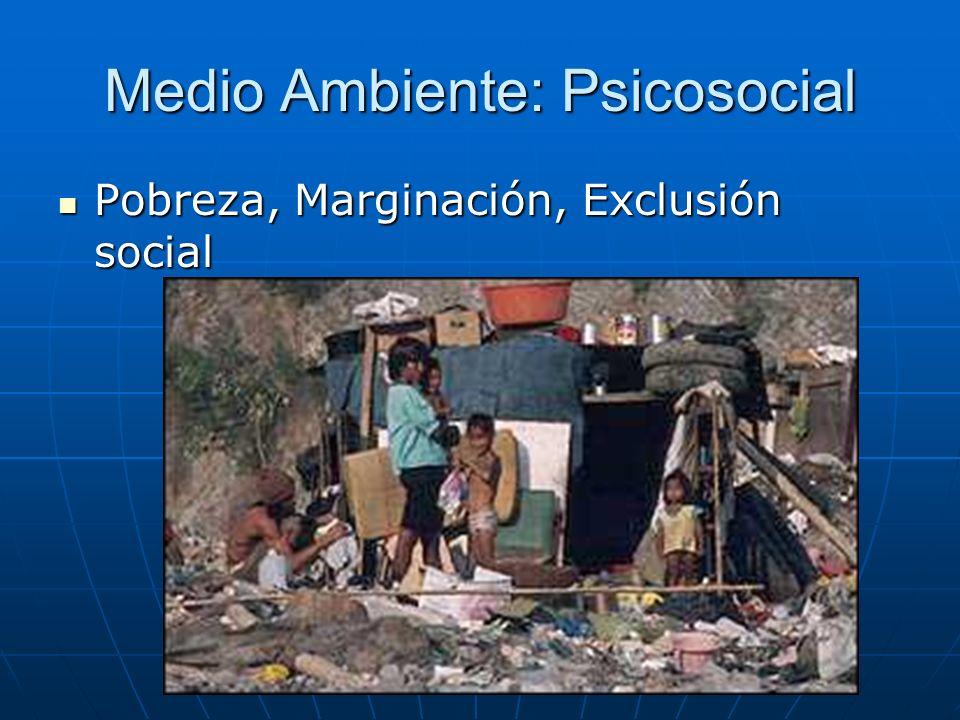 Medio Ambiente: Psicosocial Pobreza, Marginación, Exclusión social Pobreza, Marginación, Exclusión social