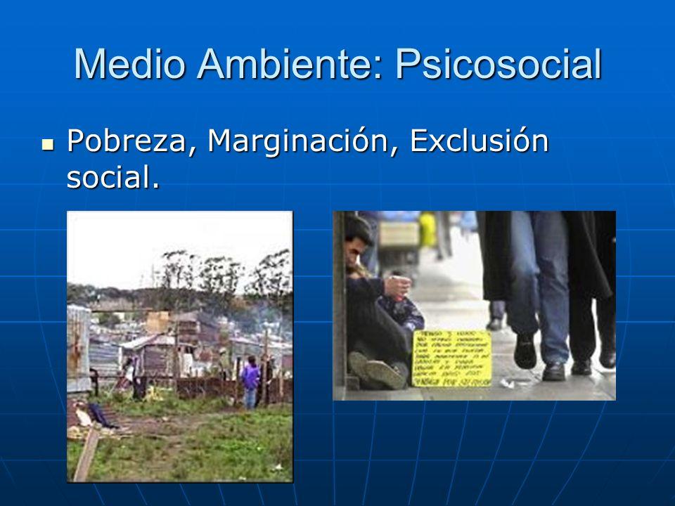 Medio Ambiente: Psicosocial Pobreza, Marginación, Exclusión social. Pobreza, Marginación, Exclusión social.