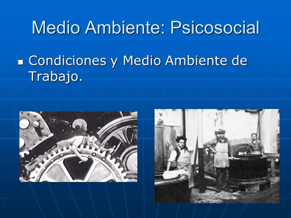 Medio Ambiente: Psicosocial Condiciones y Medio Ambiente de Trabajo. Condiciones y Medio Ambiente de Trabajo.