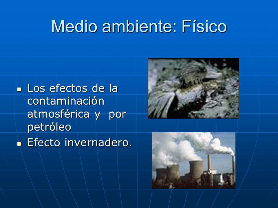 Medio ambiente: Físico Los efectos de la contaminación atmosférica y por petróleo Los efectos de la contaminación atmosférica y por petróleo Efecto in